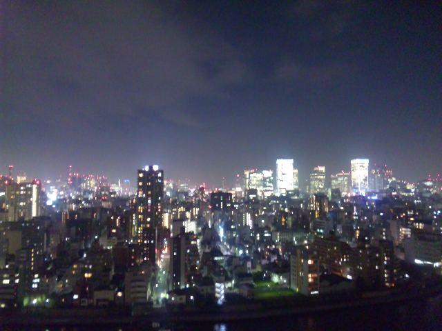 東京上空いらっしゃいませ』: チャンネル桜 チーム桜子 東京上空いらっし